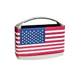 CLEARANCE! American Flag Cooler